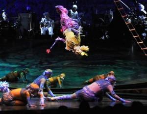Cirque du Soleil: Alegria