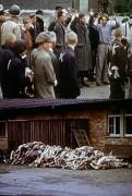 Hitler a holocaust (2000)