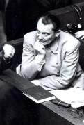 Göringova poslední bitva (2006)
